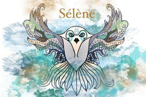 Sélène, l'agence littéraire à la croisée des mondes