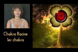 1er chakra : intelligence et lien à la terre