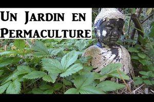Permaculture : Jardin et Maisonnette