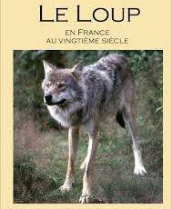 """Annonce chroniquée d'Artzamendi : les derniers livres de Jacques Baillon, auteur """"lupin"""" à suivre de près"""