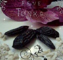 Ma sélection parfumée à la divine Tonka
