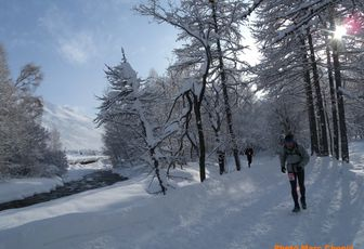 Bilan Trail 2011 : l'hiver