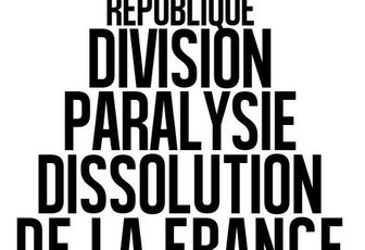 République : division, paralysie, dissolution de la France