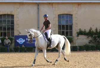 BUSINESS au Haras de Durmas en 2015