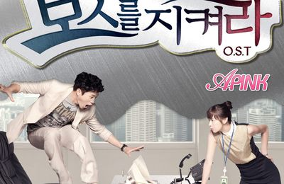 Kdrama: Protect The Boss ( Vostfr)