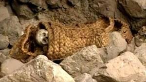 Au Pérou, des centaines de tombes Incas découvertes