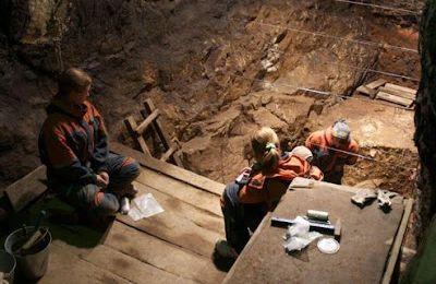 Le génome d'un cousin de Neandertal décrypté....