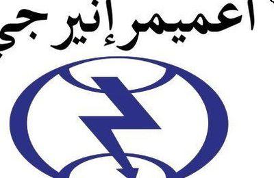 Le groupe industriel Amimer Energie veut investir au Tchad