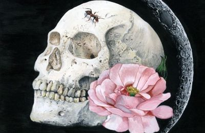 . La vie, la mort et des choses entre by Melissa Hartley.