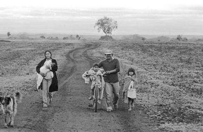 Pourquoi les Guarani se suicident ?