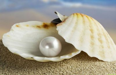 "Wanna know more about ""Pearls""? Check my latest..."
