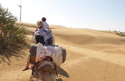 Jaisalmer (2) ... Safari à dos de dromadaire dans le désert de Thar