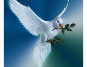 Pourquoi quitter la paix ?
