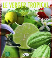 Le verger tropical