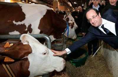 Salon de l'Agriculture : les politiciens au cul des vaches