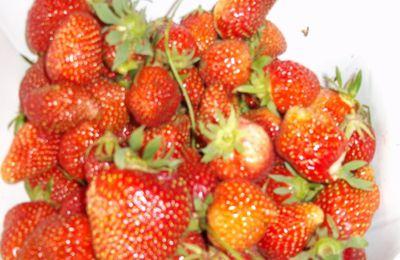 Glace aux fraises au thermomix