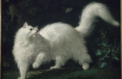 Charles Cros, A une chatte blanche