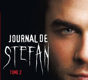 Le journal de Stefan, tome 2