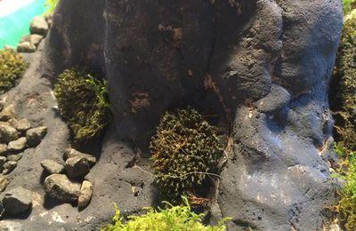 volcan et éruption volcanique ... (tutoriel gratuit - DIY)