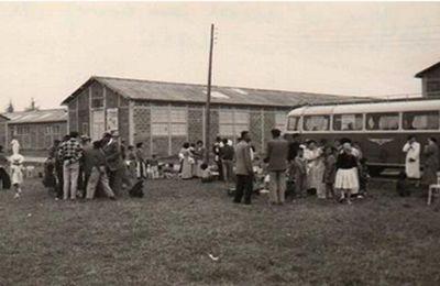 Sous tes doigts : les rapatriés d'Indochine (l'histoire méconnue et douloureuse des familles rapatriées d'Indochine et du Centre d'Accueil des Français d'Indochine (CAFI) du Lot-et-Garonne )
