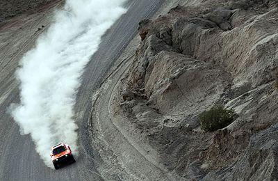 Rally. Dakar 2014. Nani Roma al frente.