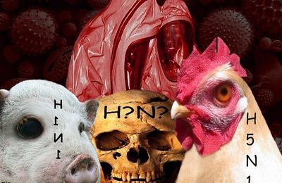 Création d'une variante mortelle à partir de la souche H5N1