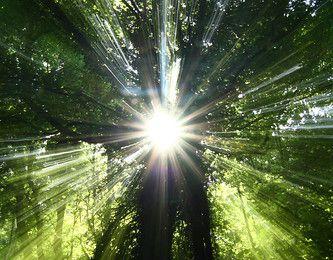 Rêves : Le désert de la solitude ... ou le soleil de la vie ?