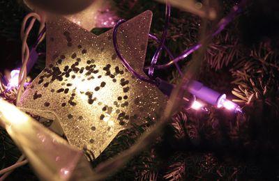 Noël 2009 #1 #2 #3