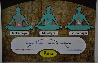 Thérapeute pratiquant l'ayurvéda ????? En connaissez-vous un dans notre région ?????