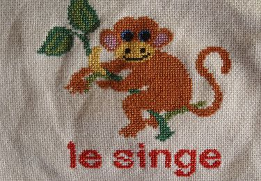 Mouton Rouge, Plaid, Le Singe
