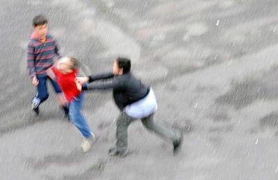 Violences scolaires : 442 incidents recensés chaque jour