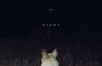 It Comes At Night (2017) de Trey Edwards Shults