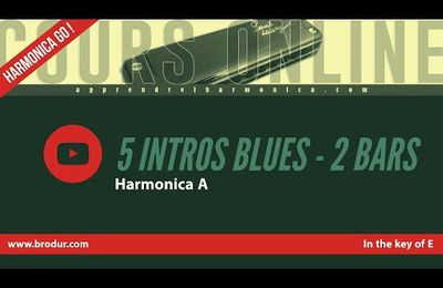 5 intros blues in the key of E - DEMO - 2 bars - Harmonica A