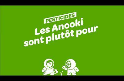 Les Anooki agitent l'info sur franceinfo (vidéo)