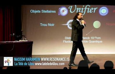 Nassim Haramein, L'Univers connecté, La Solution de Masse Holographique et la Source de la Conscience, Lilou Macé