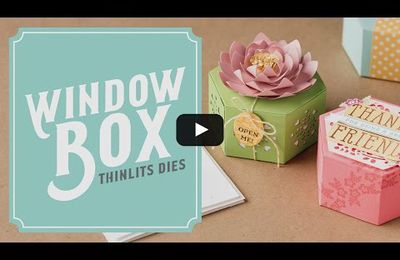 video tuto gratuit STAMPIN UP  Boite hexagonale Jardinière /Window Shopping Stamp Set & Window Box Thinlits