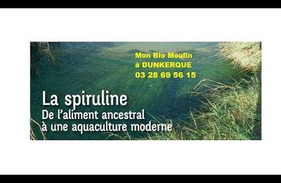 Notre Spiruline BiO à Dunkerque