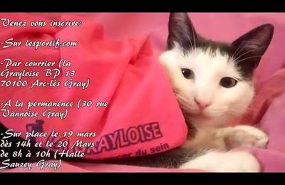 La Grayloise 2016 vidéo