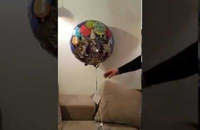Un ballon qui chante Happy Birthday, avec des MIAOUs ;)