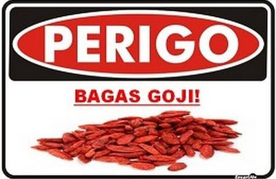Goji Top - O Antioxidante!