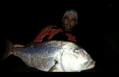 Denti du bord en surfcasting by team pescador13