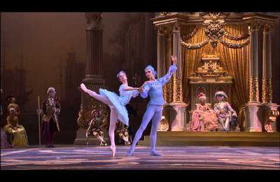A défaut de Roméo et Juliette, l'oiseau bleu te consolera.....