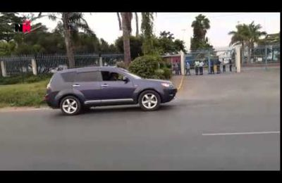 Wild Lion on the loose in Nairobi traffic mauls a man