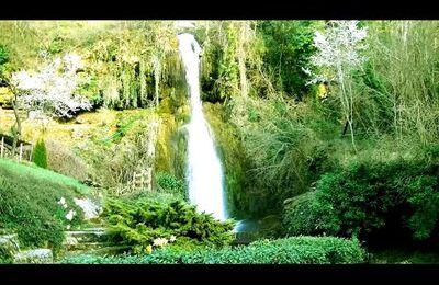 HAVRE DE PAIX & MUSIQUE d'HARMONISATION + nature - Angels Symphony 4 - F. Amathy