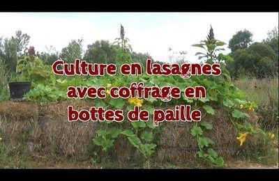 La culture en lasagnes par Damien DEKARZ