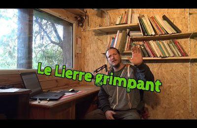 Le Gentil Lierre