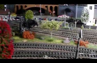 VIDEO DE MON CIRCUIT DE TRAINS MINIATURE.