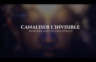 Sylvain Didelot : Canaliser l'Invisible