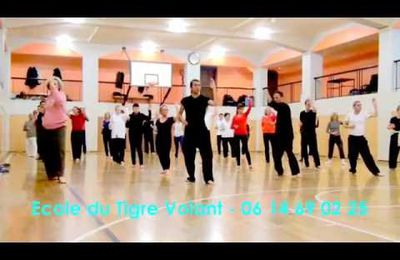 PARIS COURS DE  QI-GONG MEDICAL -  FEDERATION-KUNGFU-TAICHI.FR . Tél: 01 45 77 30 78.
