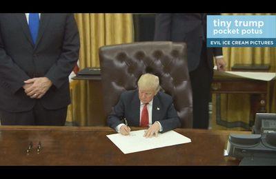 Tiny Trump, la vidéo